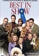 Победители шоу (2000)