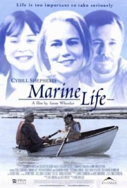 Постер фильма Жизнь в подводном мире (2000)