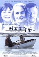 Жизнь в подводном мире (2000)