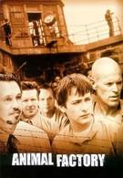 Зверофабрика (2000)