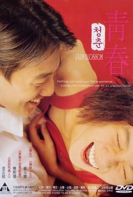 Постер фильма Сливовый цвет (2000)