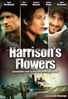 Спасти Хэррисона (2000)