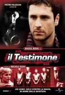 Свидетель (2001)