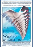 Птицы (2001)