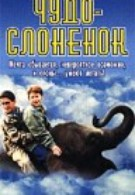 Чудо – слоненок (2001)
