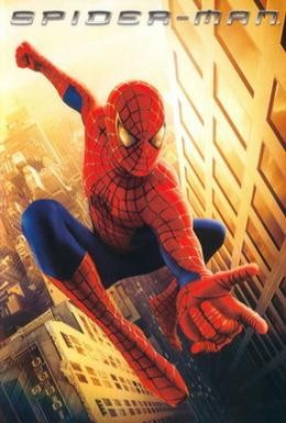 Постер фильма Человек-паук (2002)