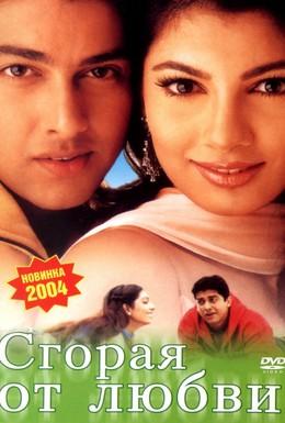 Постер фильма Сгорая от любви (2002)