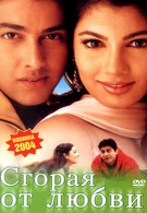 Сгорая от любви (2002)