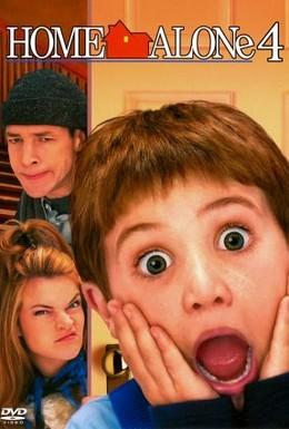 Постер фильма Один дома 4 (2002)