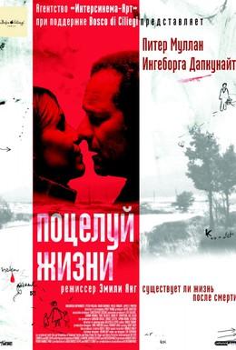 Постер фильма Поцелуй жизни (2003)