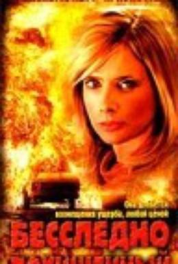 Постер фильма Бесследно похищенный (2003)