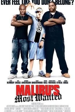 Постер фильма Разыскиваются в Малибу (2003)