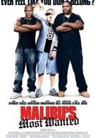 Разыскиваются в Малибу (2003)