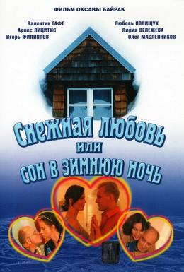 Постер фильма Снежная любовь, или Сон в зимнюю ночь (2003)
