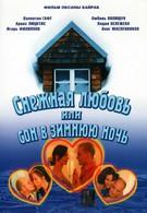 Снежная любовь, или Сон в зимнюю ночь (2003)