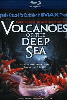 Постер фильма Вулканы в морских глубинах (2003)