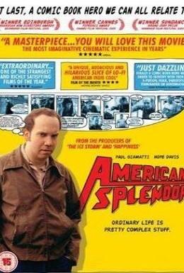 Постер фильма Американское великолепие (2003)