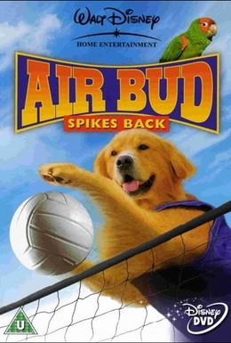 Постер фильма Король воздуха: Возвращение (2003)
