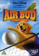 Король воздуха: Возвращение (2003)