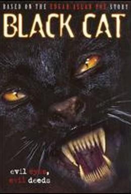 Постер фильма Черная кошка (2004)