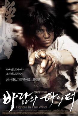 Постер фильма Воин ветра (2004)