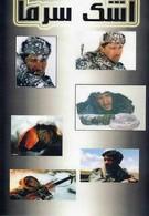 Слеза холода (2004)