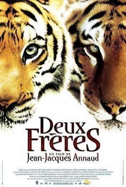 Постер фильма Два брата (2004)