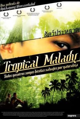 Постер фильма Тропическая болезнь (2004)