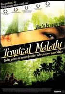Тропическая болезнь (2004)