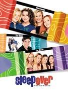 Ночная тусовка (2004)
