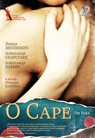 О Саре (2005)