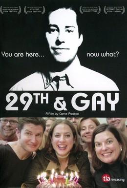 Постер фильма Двадцатидевятилетие гея (2005)