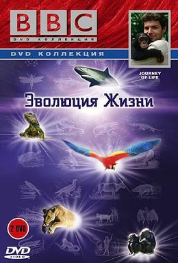 Постер фильма BBC: Эволюция жизни (2005)