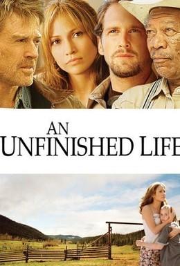 Постер фильма Незаконченная жизнь (2005)