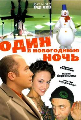 Постер фильма Один в новогоднюю ночь (2006)