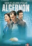 Цветы для Алджернона (2006)