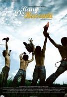 Цвет шафрана (2006)