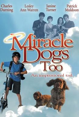 Постер фильма Зак и чудо-собаки (2006)
