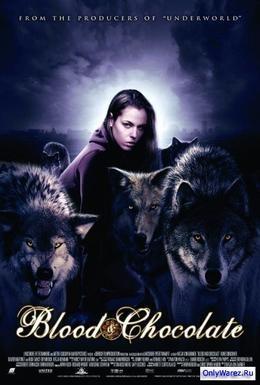Постер фильма Кровь и шоколад (2007)