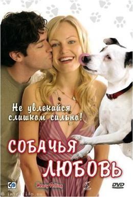 Постер фильма Собачья любовь (2007)
