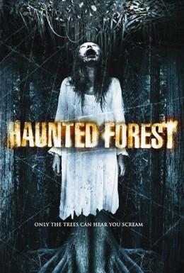 Постер фильма Проклятый лес (2007)