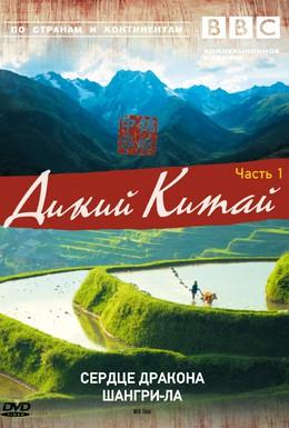 Постер фильма Дикий Китай (2008)