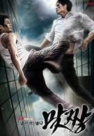 Уличный боец (2008)