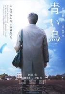 Синяя птица (2008)