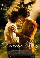 Парень мечты (2008)