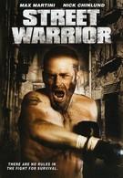 Уличный воин (2008)
