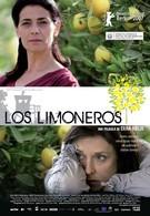 Лимонное дерево (2008)