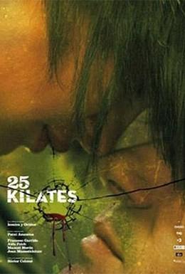 Постер фильма 25 каратов (2008)