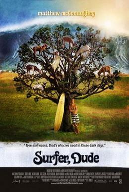 Постер фильма Серфер (2008)