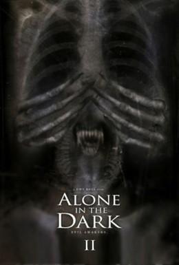 Постер фильма Один в темноте 2 (2008)